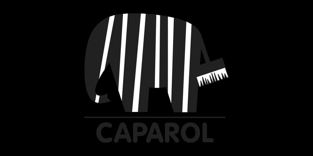 Logo von Caparol